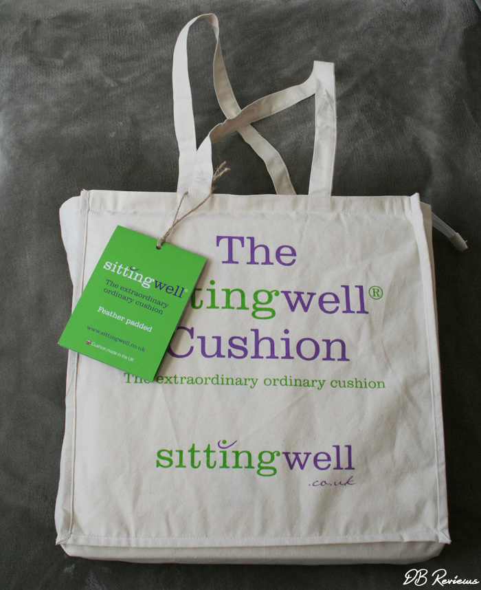 The Deluxe Sittingwell Back Support Cushion