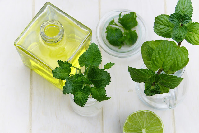 benefits of mint oil