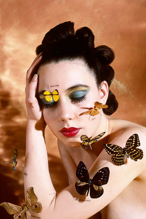 Alva Bernadine: The Butterfly Collector - After Brandt