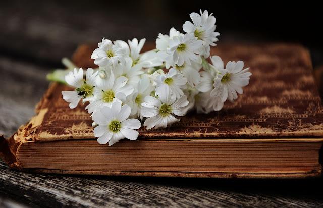 livro e flores