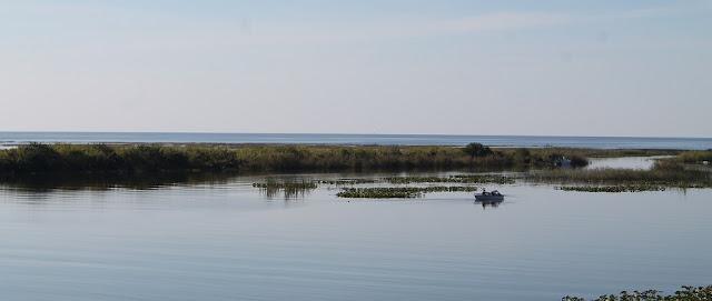 Paisajes del lago Okeechobee