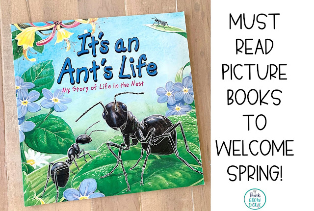 insect picture books for kids