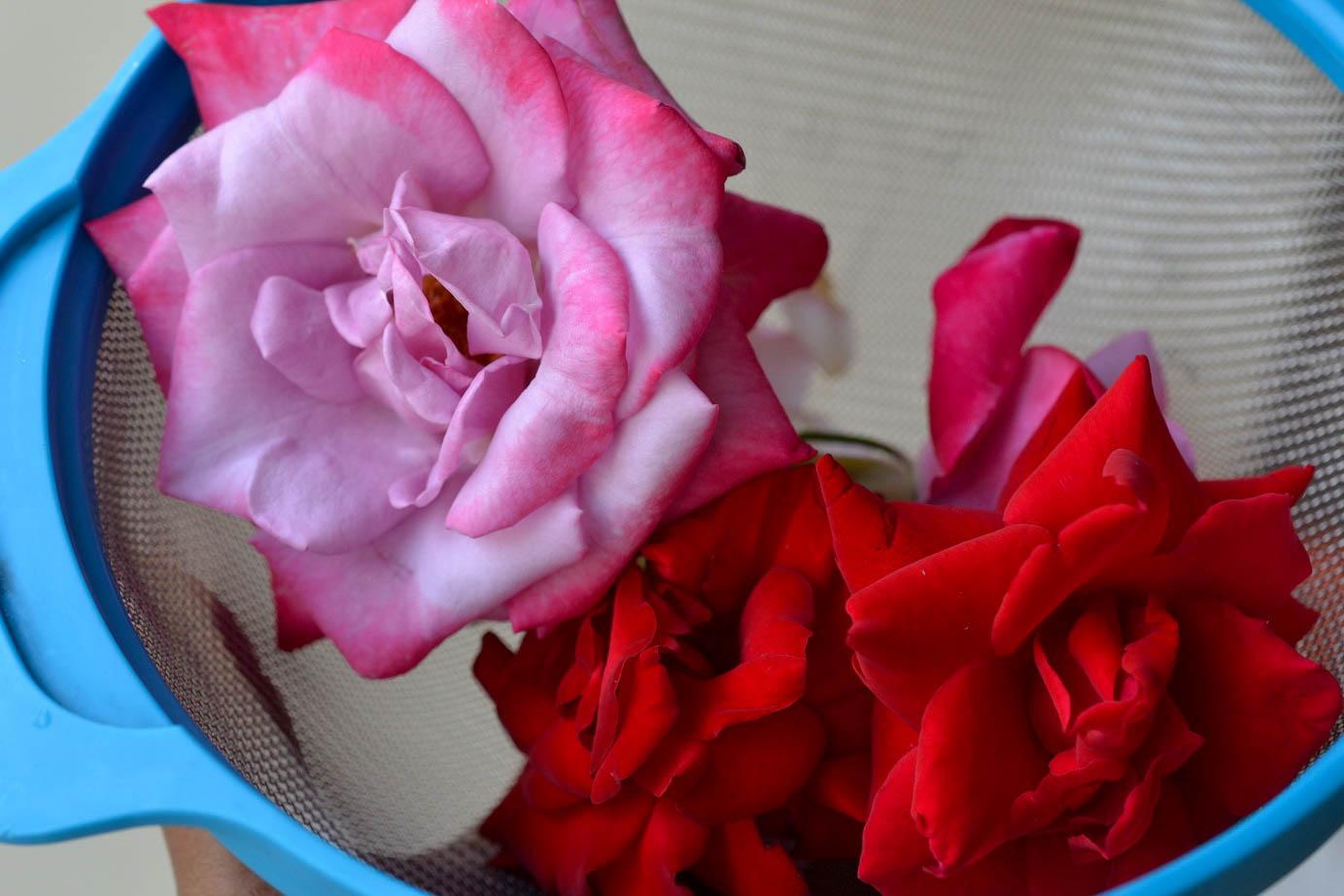 Greedy Girl : Vegan rose petal ice-cream