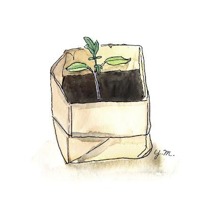 origami planting pot by Yukié Matsushita