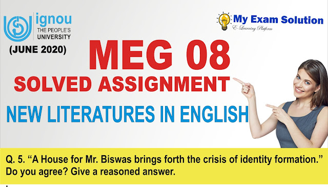 meg assignment