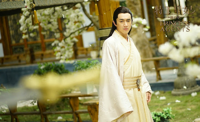 Princess Agents Lin Gengxin
