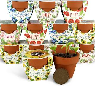 wedding sunflower favor flower pots