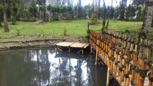 Kolam pancing di Cimanggu