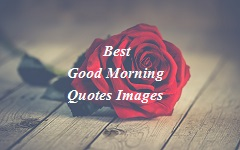 50+ Best Good Morning Images with Quotes, Wishes 2020