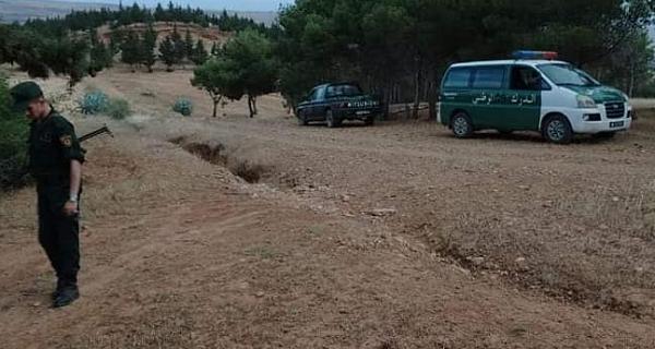 التحقيق في قضية الإعتداء على مساحات غابية بالشلف