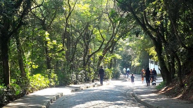 Parque das Hortênsias em Taboão da Serra