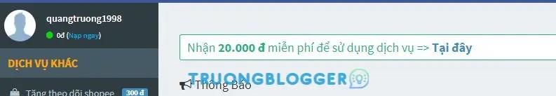 Tặng bạn 1000 lượt theo dõi trên Facebook nhanh nhất 2021 với GoSeeding