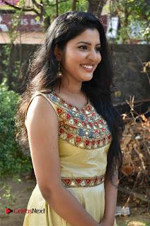 Actress Nayana Nair Stills in Long Dress at Arasakulam Tamil Movie Audio Launch  0004.jpg