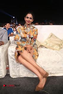 Actress Rakul Preet Singh Stills in Short Dress at Dhruva Pre Release Function  0098.JPG