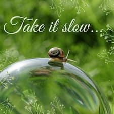 "A photo of a snail on a bubble below the words ""Take it slow..."""