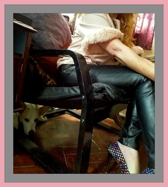 Imagem eu e a minha cadela Chica (ALT)