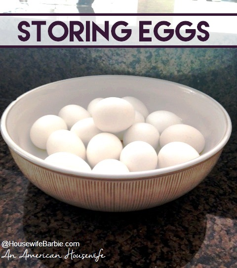http://www.housewifebarbie.com/2016/07/can-eggs-be-frozen-how-long-can-eggs-be.html