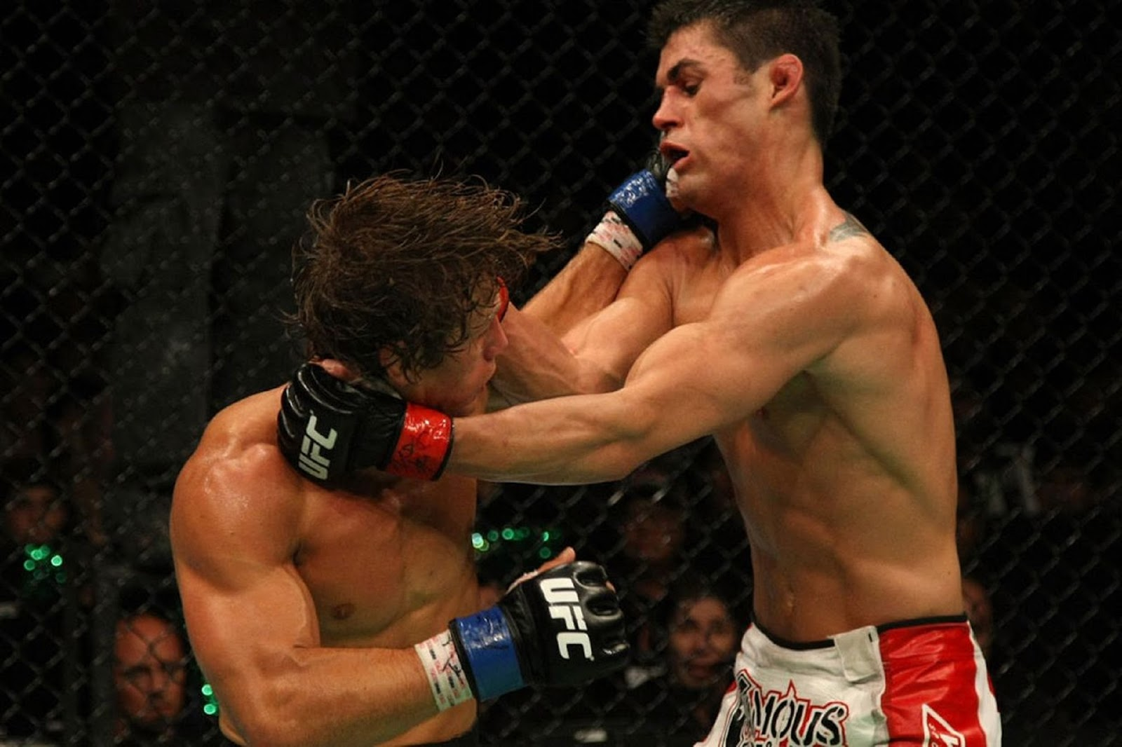 DOMINICK CRUZ VS. URIJAH FABER 5