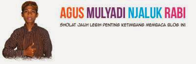 Review : Blog Agus Mulyadi