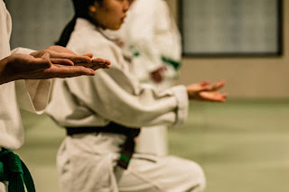 martial arts certification