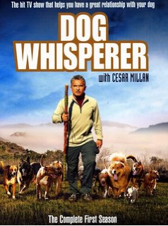 Dog Whisperer, Cesar Millan Animal Cruelty