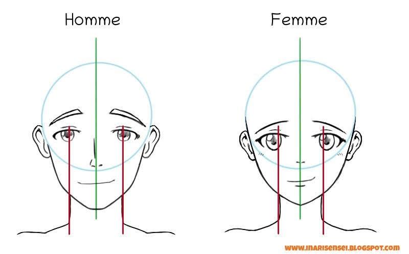 dessiner le cou