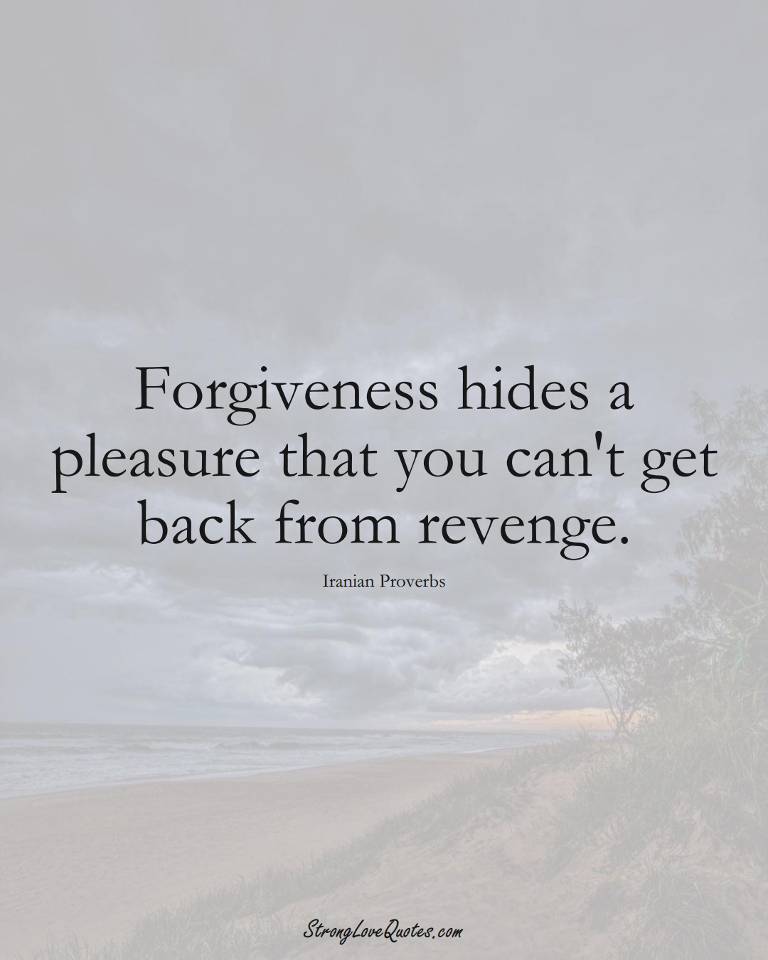 Forgiveness hides a pleasure that you can't get back from revenge. (Iranian Sayings);  #MiddleEasternSayings