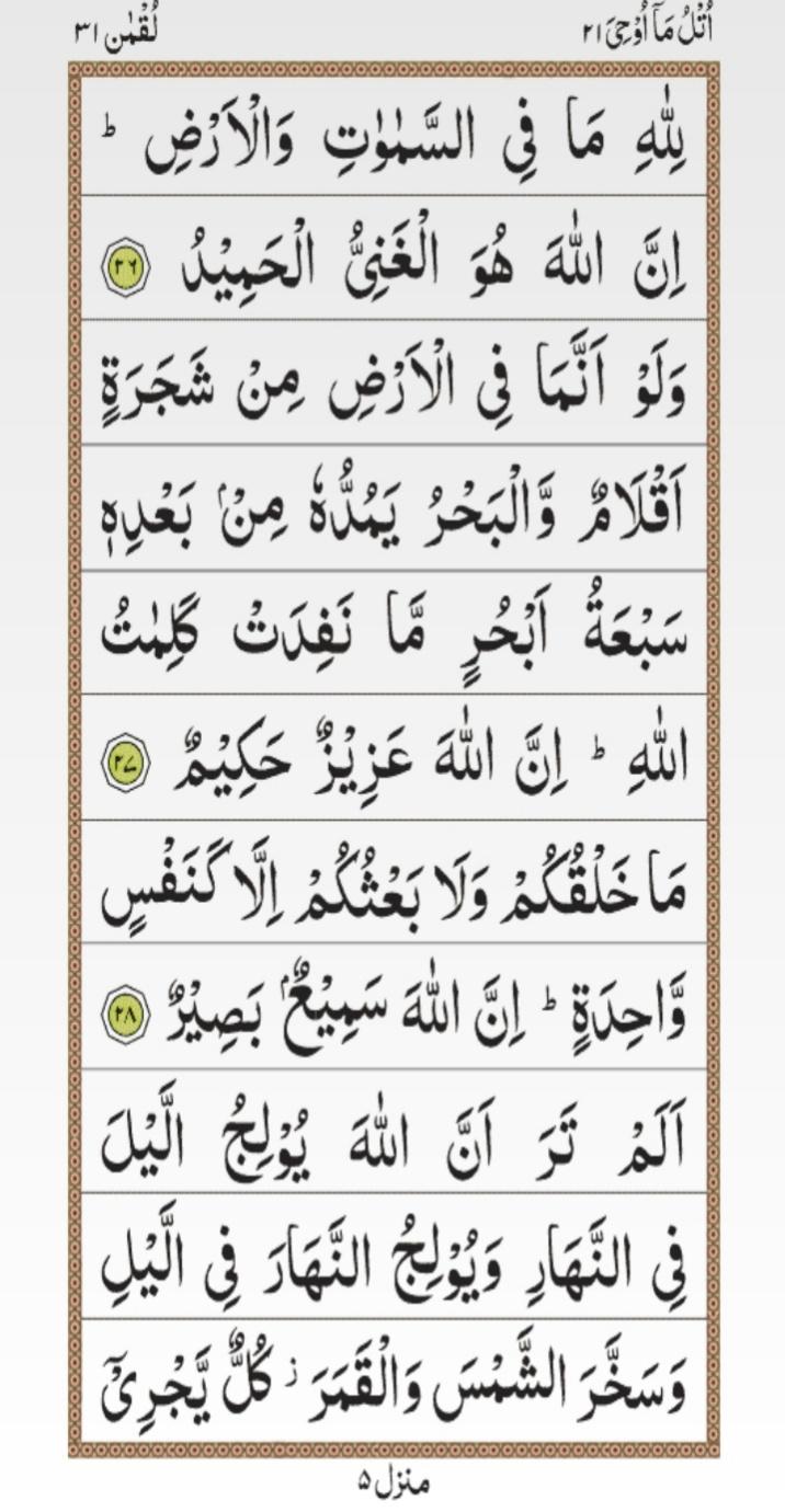 surah luqman, surah luqman ayat 16, surah 31 18, surah 31, surah luqman pdf, surah luqman with urdu translation, surah luqman tafsir, surah luqman translation, surah luqman full, surah luqman ayat 26, surat luqman arab, sura lukman, surah luqman mp3, surah luqman in english, luqman quran, surah luqman rumi, surah luqman meaning,  surat luqman 14, surah luqman english translation, surah luqman 18, surah luqman full pdf