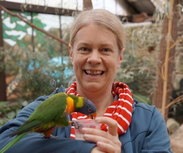 Phantastische Vögel aus aller Welt: Unterwegs im Weltvogelpark Walsrode (+ Verlosung). Die Fütterung der Loris im Toowoomba war ein Erlebnis!