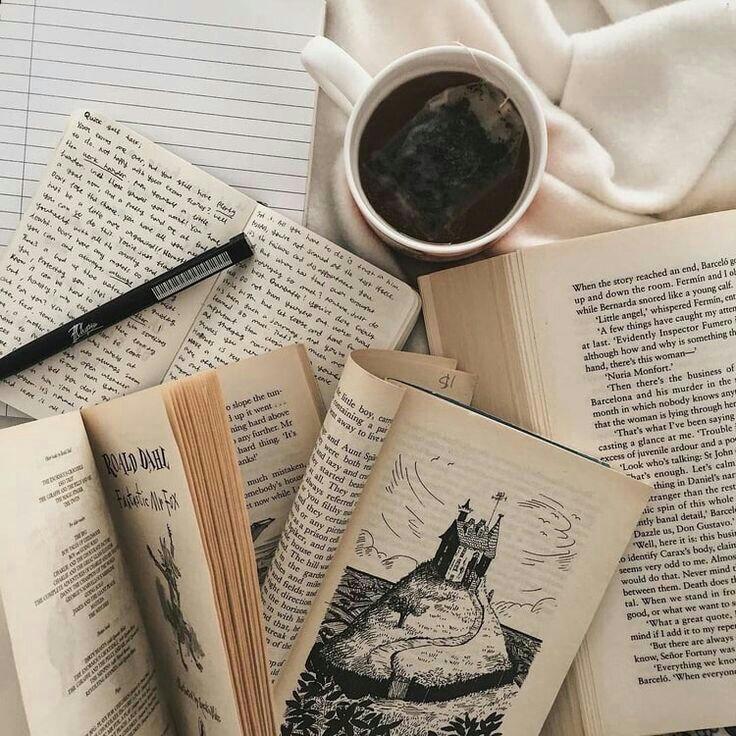 Cara Meresensi Buku dan Novel