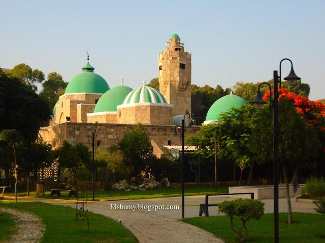 جامع طينال