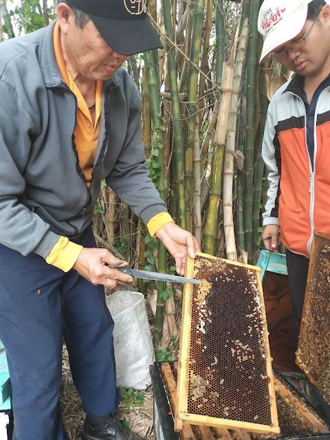 推廣台灣純蜂蜜、龍眼蜜、蜂蜜檸檬、蜂花粉、蜂王漿、等蜂產品,產品經國際食品安全認證,SGS檢驗,提供天然純淨,安全的蜂產品是愛蜂園的唯一宗旨