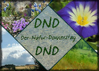 Klick zum 'Naturdonnerstag'