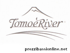 carta Tomoe River