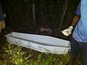 Corpo de idoso de 90 anos é encontrado no lixão de Lago da Pedra