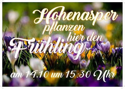 Blumenzwiebelspende wird verpflanzt