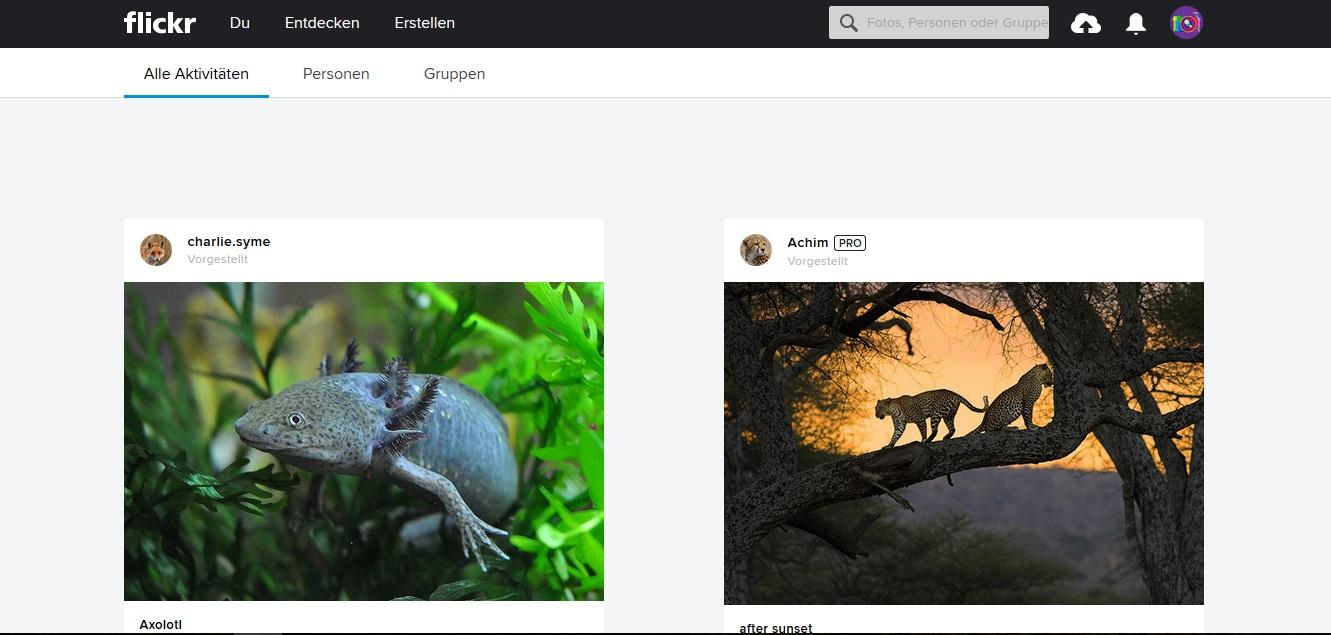 Kostenlose Stock Photos mit Creative Commons Zero Lizenz als freie Bildquellen für deinen Blog - flickr