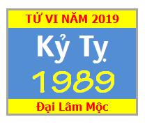 Tử Vi Tuổi Kỷ Tỵ 1989 Năm 2019 Nam Mạng - Nữ Mạng