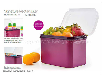 Signature Rectangular ~ Tupperware Promo Oktober 2016