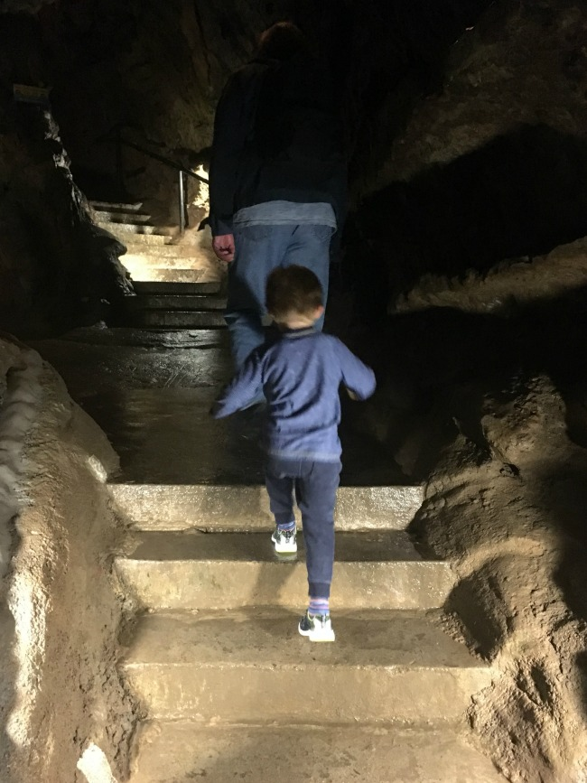 boy-climbing-steps-inside-cave-at-dan-yr-ogof