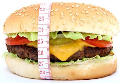 Fat burning basics -  things you need to know - Fat loss FAQ