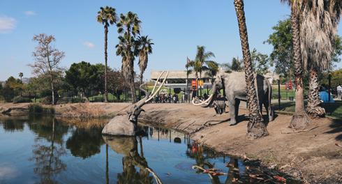 La Brea Tar Pits Museum Los Angeles