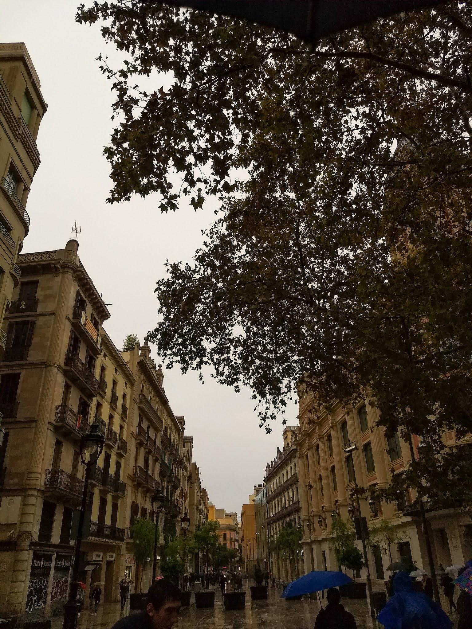 People with umbrellas walking on Portal de l'Àngel in Barcelona on a rainy day.
