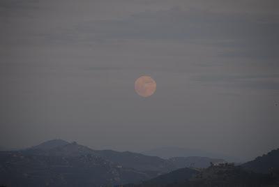 full moon: ladyd books