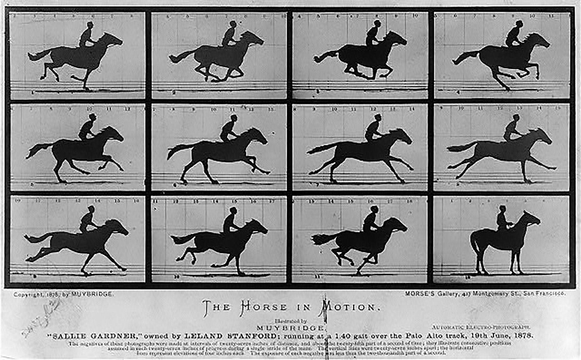 Memotret Kaki Kuda yang Berlari