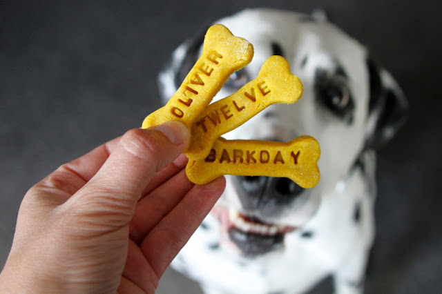 "Dalmatian dog looking at bone shaped treats stamped with ""Oliver"" ""Twelve"" ""Barkday"""