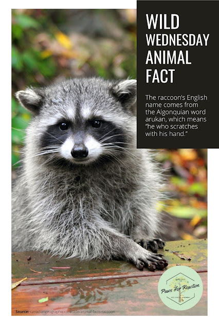 July is Wild About Wildlife Month: Featuring Rideau Valley Wildlife Sanctuary #WildWednesday