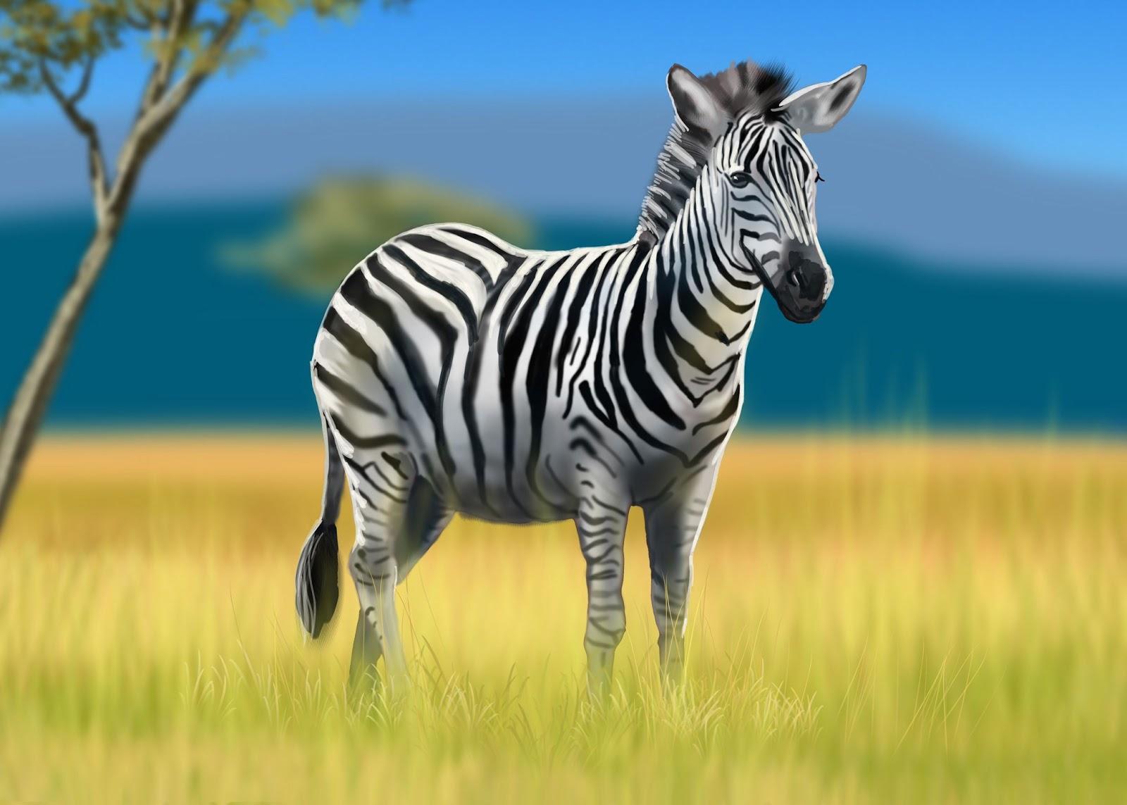 Zebra Facts For Kids | Zebra Diet, Habitat, Behavior, and Characteristics