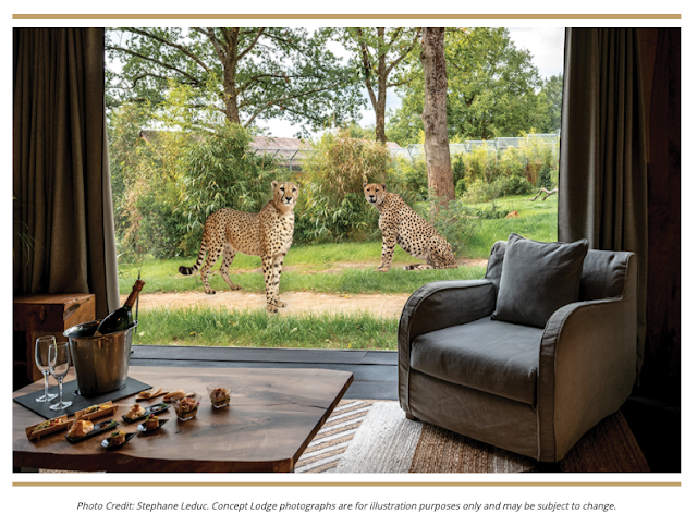 10 UK Zoos Where You Can Stay Overnight = West Midland Safari Park Cheetah Lodge