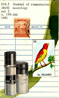 library card Mexican lottery card el pajaro bird jade east vintage cologne bottle postage stamp peasants in a field Dada Fluxus mail art collage